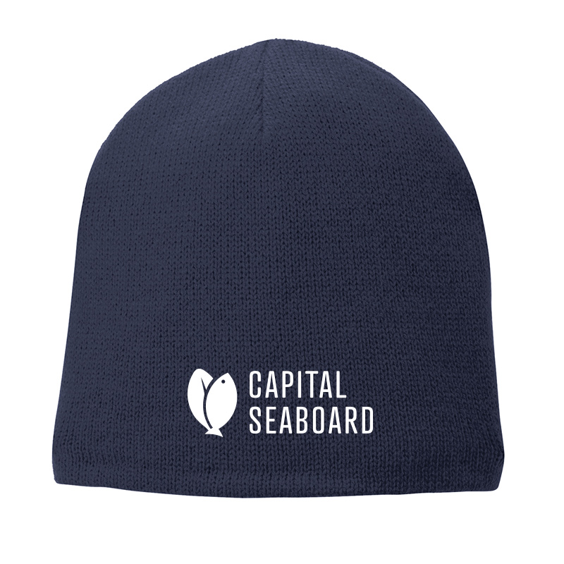 Capital Seaboard Fleece Lined Beanie Cap-Navy
