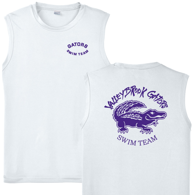 Valleybrook Ladies Wicking V Neck Tshirt